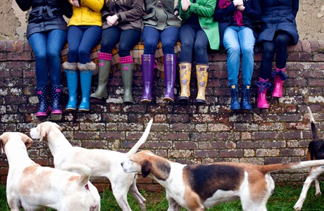 Wellies and doggies for days at Joules
